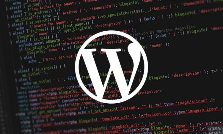 Comment devenir un top développeur WordPress
